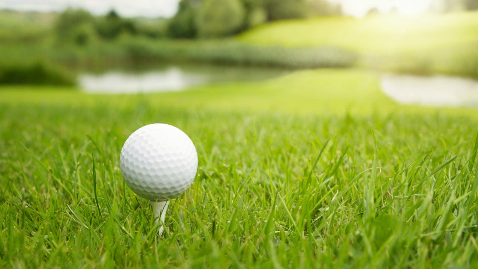 Winnipeg Golf Courses - Golf Tee